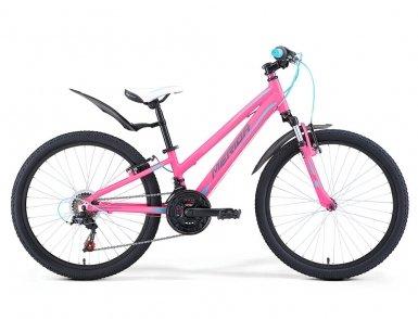 Детский велосипед Merida MATTS J20 GIRL (2017)
