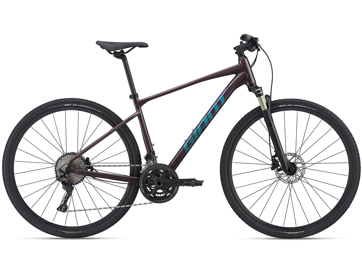 Велосипед Giant Roam 0 Disc (2021)